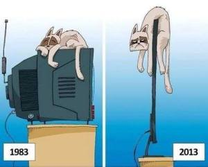 Funny-cartoon-Cat-lieing-on-the-tv